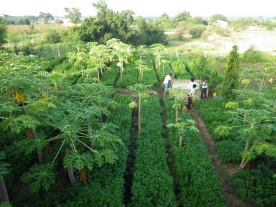 la-prefecture-d-agoe-nive-va-se-doter-d-un-centre-agro-ecologique-avec-l-appui-de-la-bb-lome