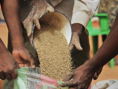 togo-le-pnper-va-apporter-un-appui-en-semences-a-5000-menages-vulnerables