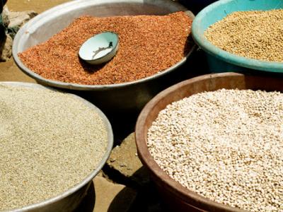 cereales-les-prix-devraient-rester-stables-durant-les-mois-a-venir