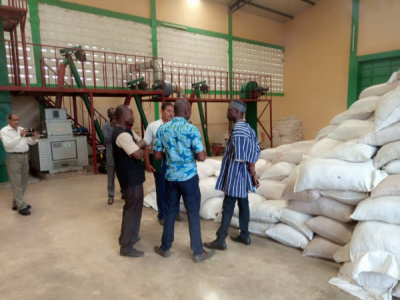 soybean-the-togolese-government-seeks-a-private-investor-to-join-the-shareholding-of-huilerie-de-sokode