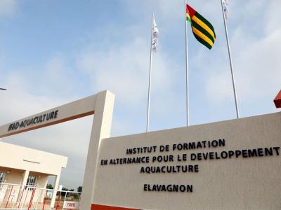 rentree-2020-2021-l-ifad-d-elavagnon-recrute