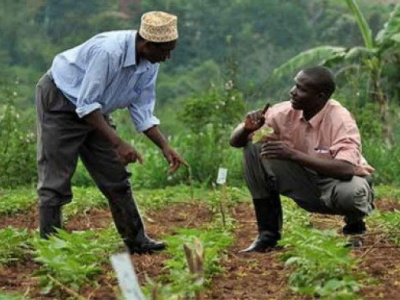 agropole-de-kara-une-formation-pour-renforcer-les-capacites-des-exploitants-agricoles