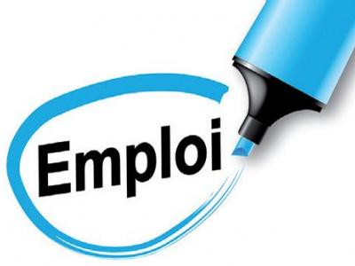 taux-d-emploi-moyen-sur-la-periode-2000-2018-avec-77-7-le-togo-est-le-premier-pays-de-la-sous-region-selon-l-oit