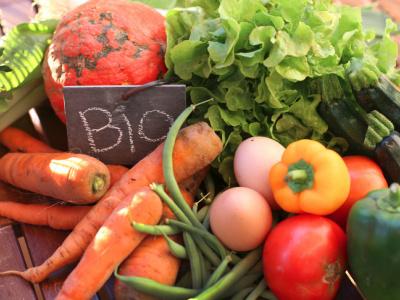togo-31eme-fournisseur-mondial-de-produits-agricoles-bio-vers-l-europe-5eme-africain-et-1er-de-la-cedeao