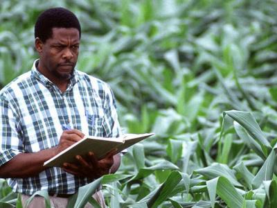 togo-100-jeunes-recherches-dans-le-cadre-de-la-transition-agro-ecologique