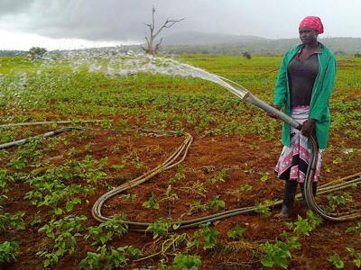 le-togo-et-le-fonds-khalifa-formalisent-un-accord-de-financement-de-15-millions-en-faveur-du-secteur-agricole