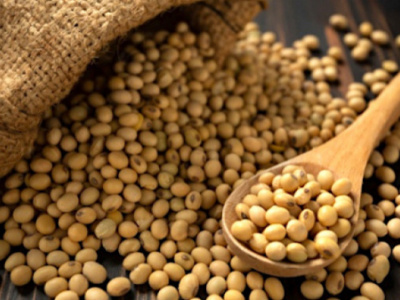 soybean-farmers-and-government-must-work-together-to-develop-the-sector-cifs-says