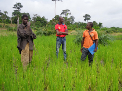 the-pnper-has-spent-xof311-million-on-rural-businesses-since-the-year-started